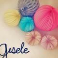 mini-Gisele